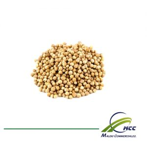 Coriander Export of Herb essential oil - Maleki Commercial Co.