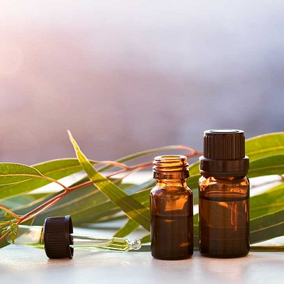 Eucalyptus oil Export of Herb essential oil - Maleki Commercial Co.