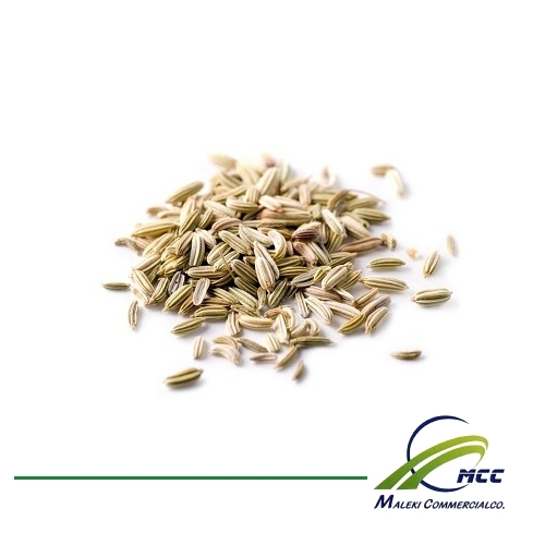 Fennel Export of Herb essential oil - Maleki Commercial Co.