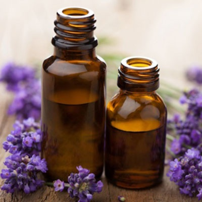 Lavender oil Export of Herb essential oil - Maleki Commercial Co.
