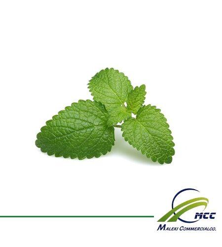 Lemon balm Export of Herb essential oil - Maleki Commercial Co.
