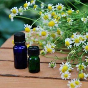 Matricaria oil Export of Herb essential oil - Maleki Commercial Co.
