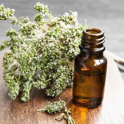 Thyme oil Export of Herb essential oil - Maleki Commercial Co.