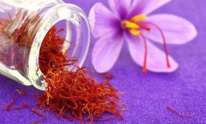 انواع گیاه زعفران