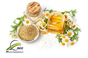 گیاهان دارویی موثر بر پوست