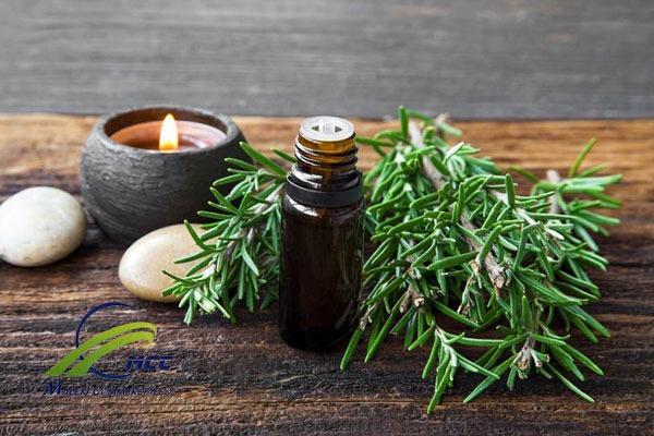 تاثیر گیاهان دارویی بر سینوزیت