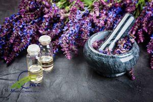 تاثیر گیاهان دارویی بر میگرن