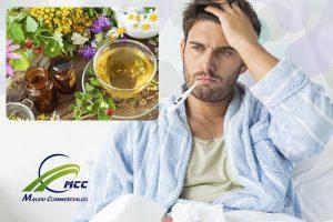 کاهش تب با گیاهان دارویی